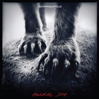 Shearwater - Animal Joy