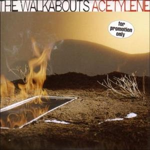 The Walkabouts : Acetylene