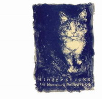 Tindersticks : Live Bloomsburry Theatre