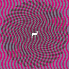 Deerhunter : Cryptograms